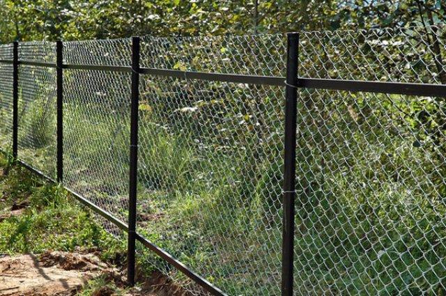 Забор: новые лица старого знакомца