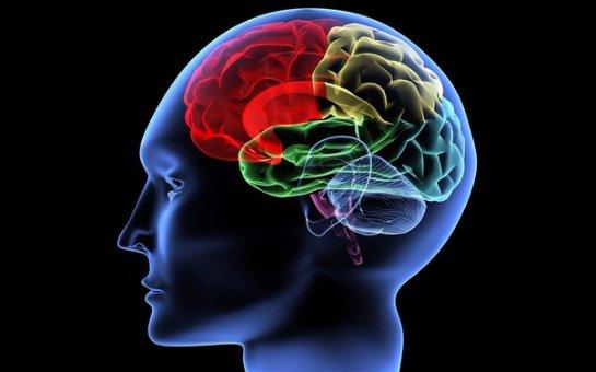Некоторые игры улучшают работу мозга