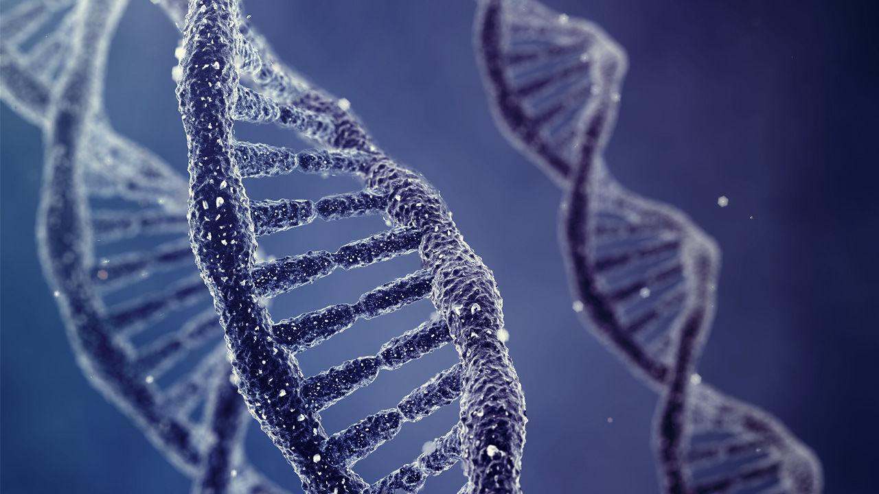 ДНК человека, умершего в 1827 году, восстановили без его останков