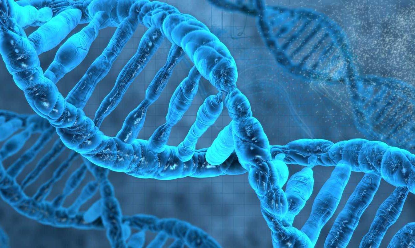 Учёные придумали новый способ хранения данных внутри ДНК