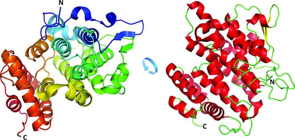 Утконосы помогут учёным создать новые антибиотики