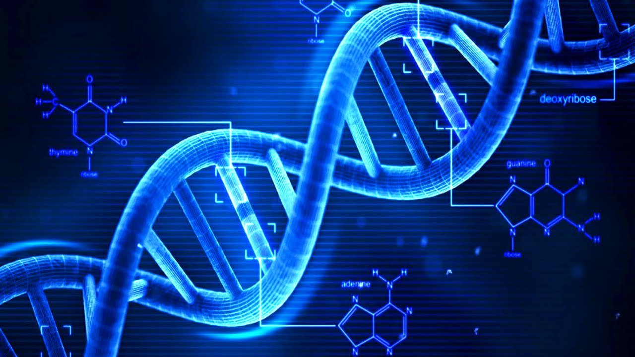 В «Сколково» разрабатывают первый отечественный прибор для расшифровки генома