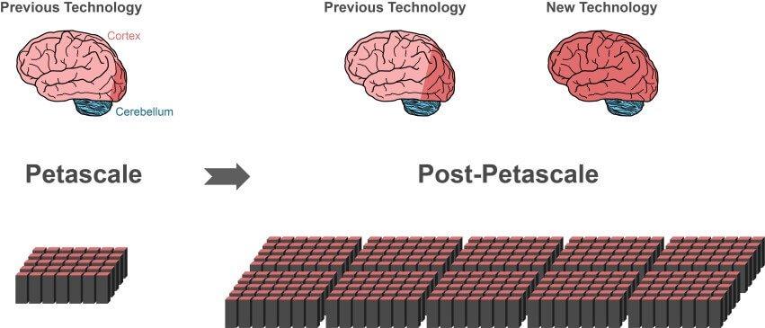 Новый алгоритм приблизил нас к полной симуляции мозга