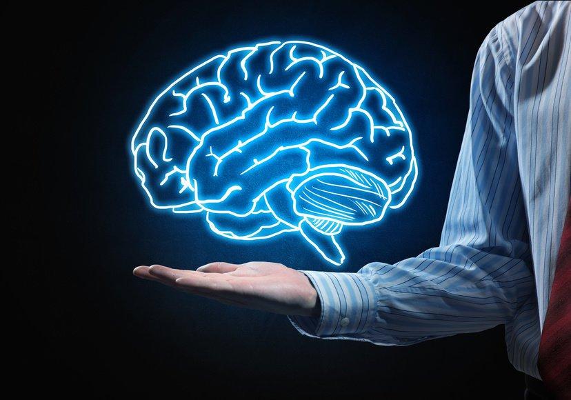 Они убьют вас, чтобы спасти мозг: объясняем научным языком замысел Nectome