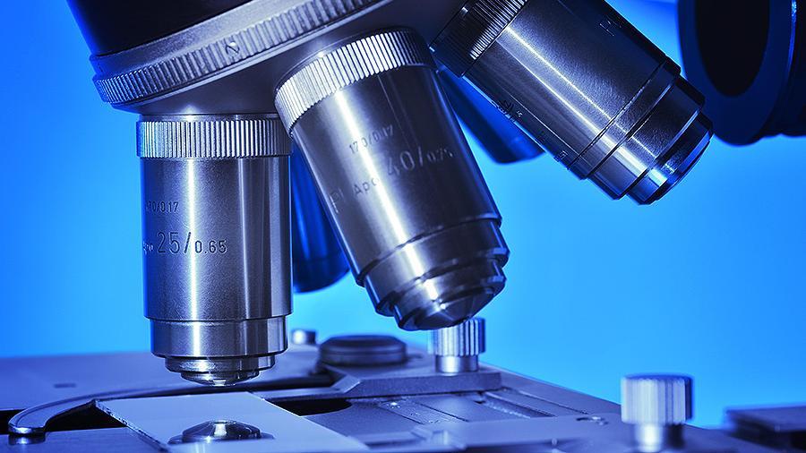 Создан микроскоп, позволяющий наблюдать за движением клеток внутри организма