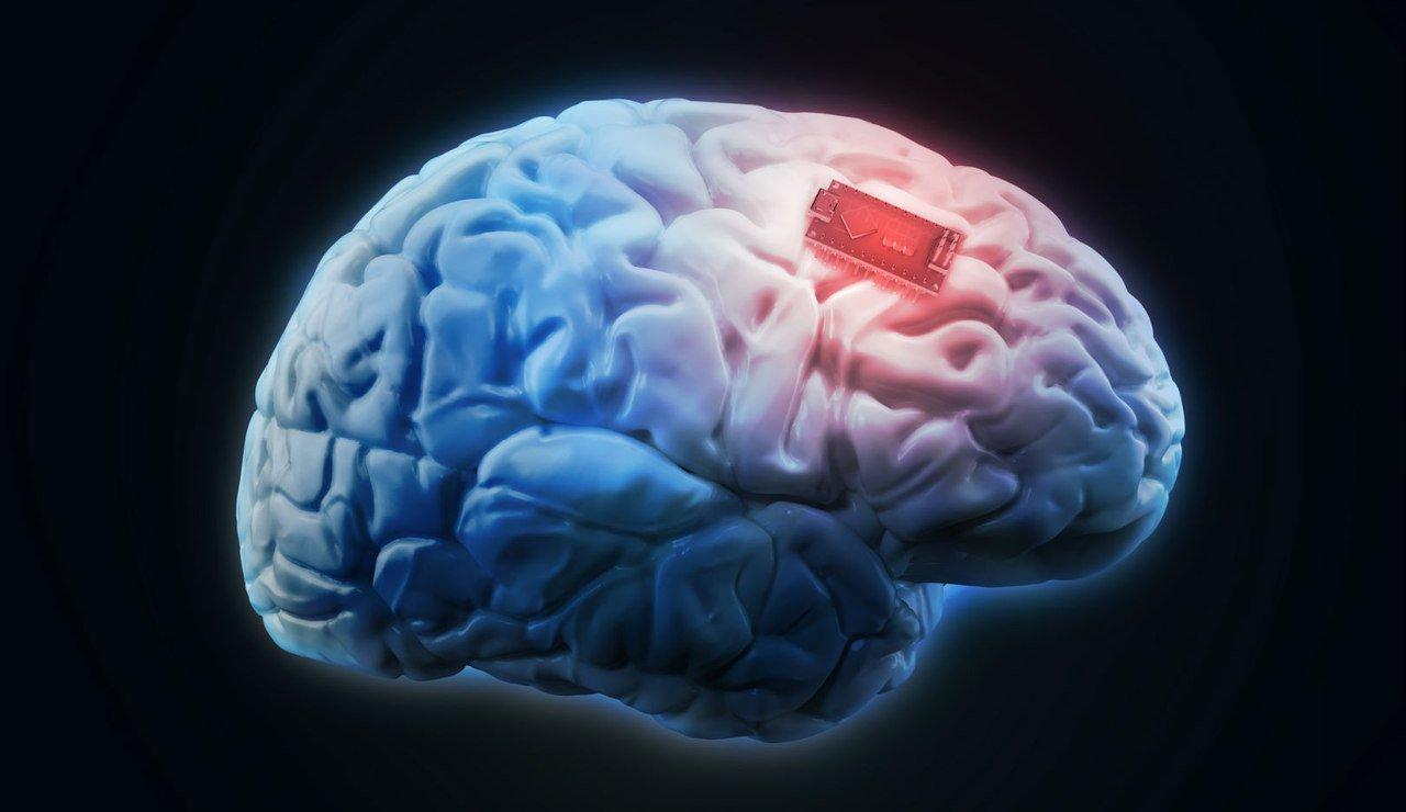 Импланты для улучшения памяти уже можно использовать. И они работают!