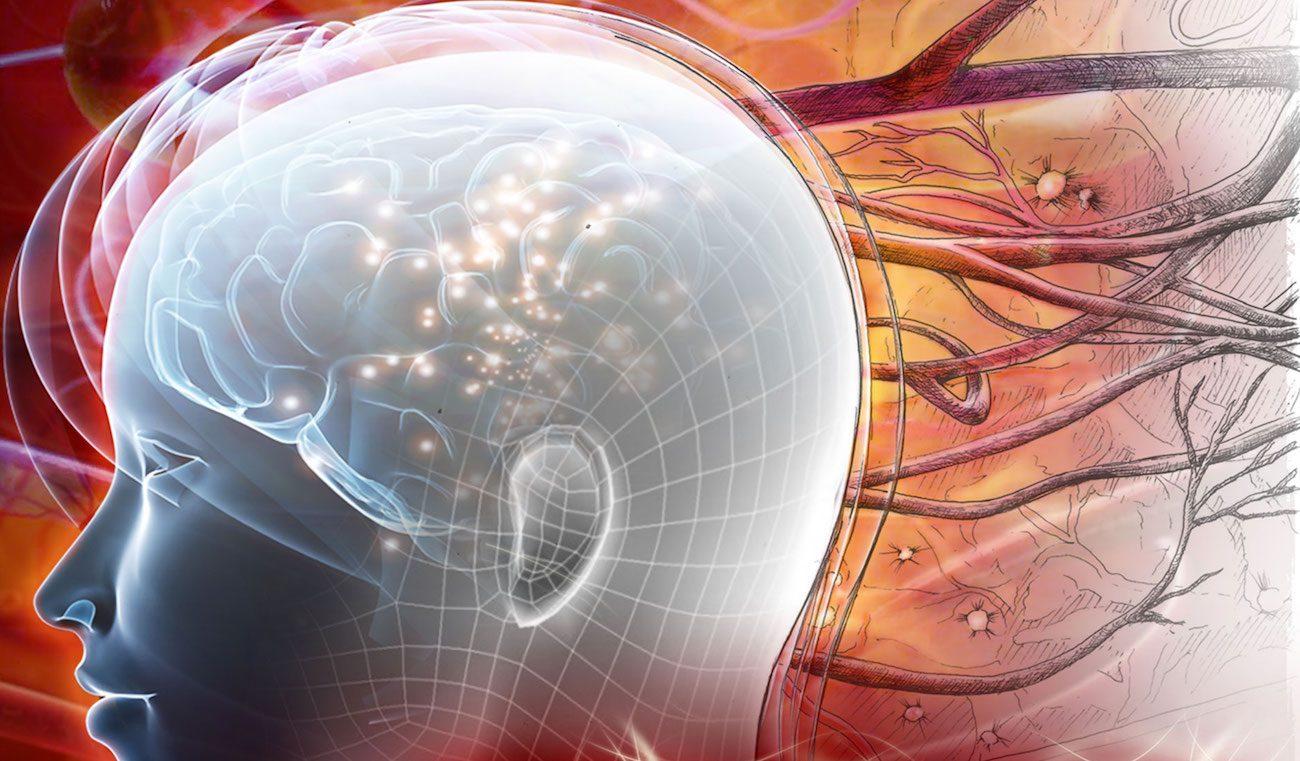 Сколько данных способен вместить наш мозг?