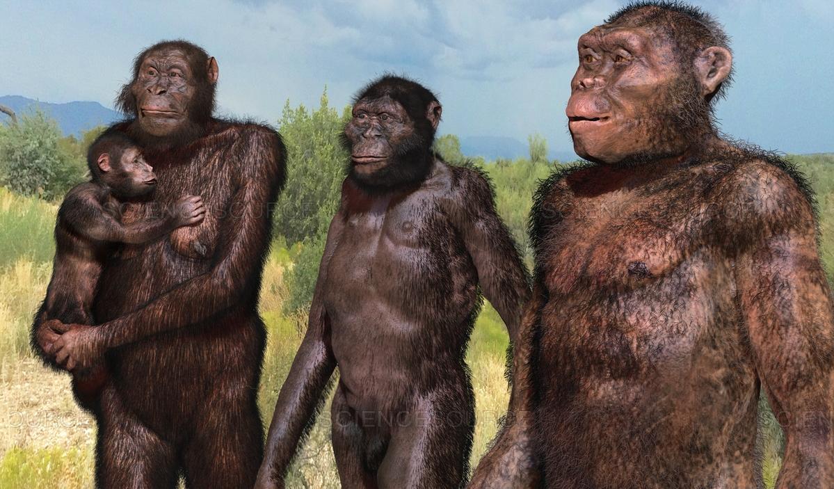 Эволюция человека: обратно к деревьям?
