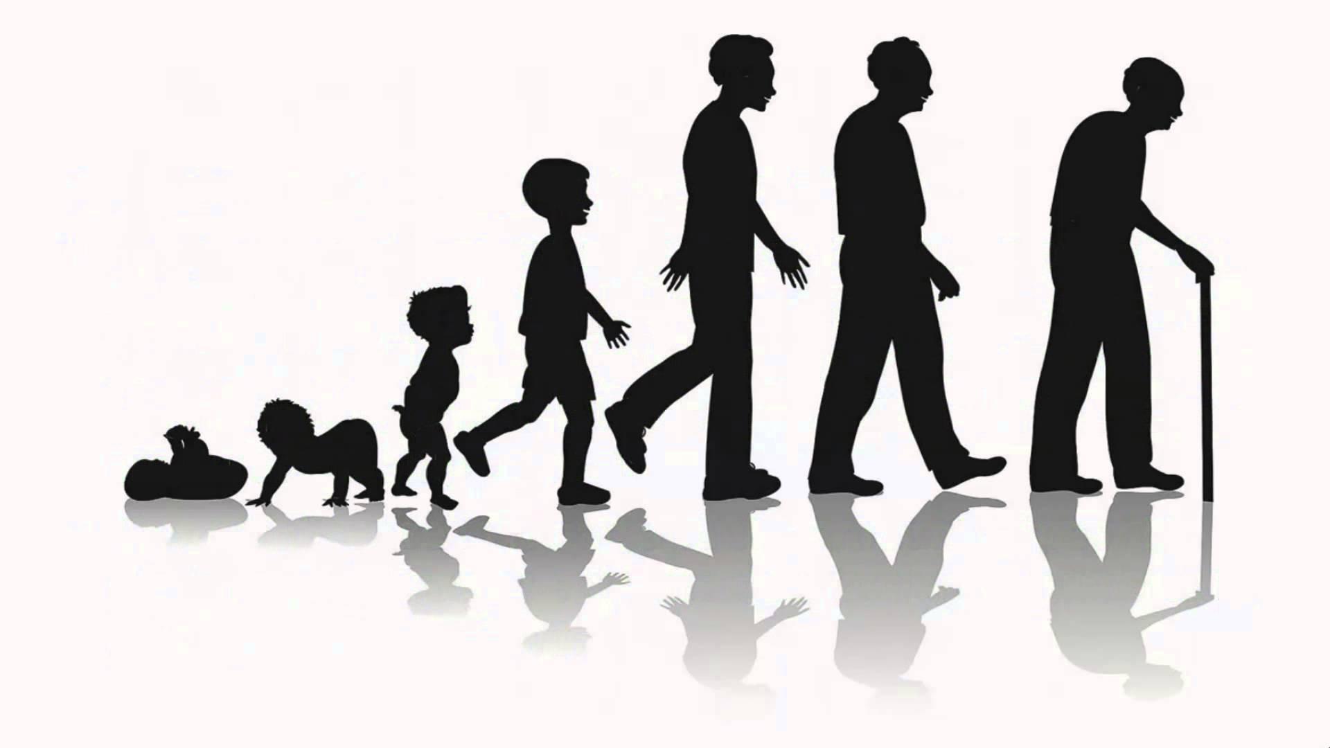 Предел человеческого долголетия достигнут? Как бы не так!
