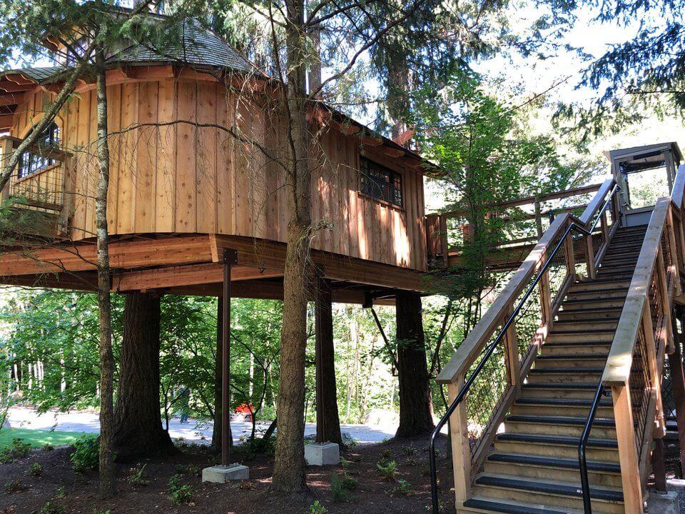 Экскурсия по домикам на деревьях, построенным компанией Microsoft