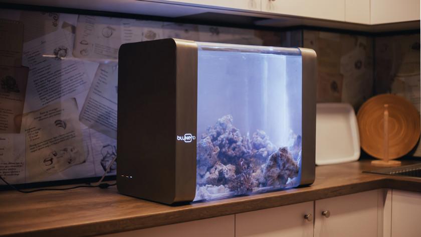 Bluenero: первый «умный» аквариум