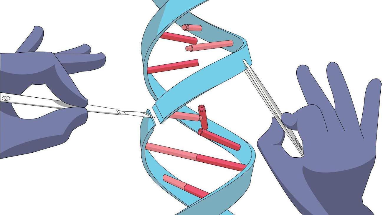 CRISPR открывает путь новому методу лечения — «геномной хирургии»
