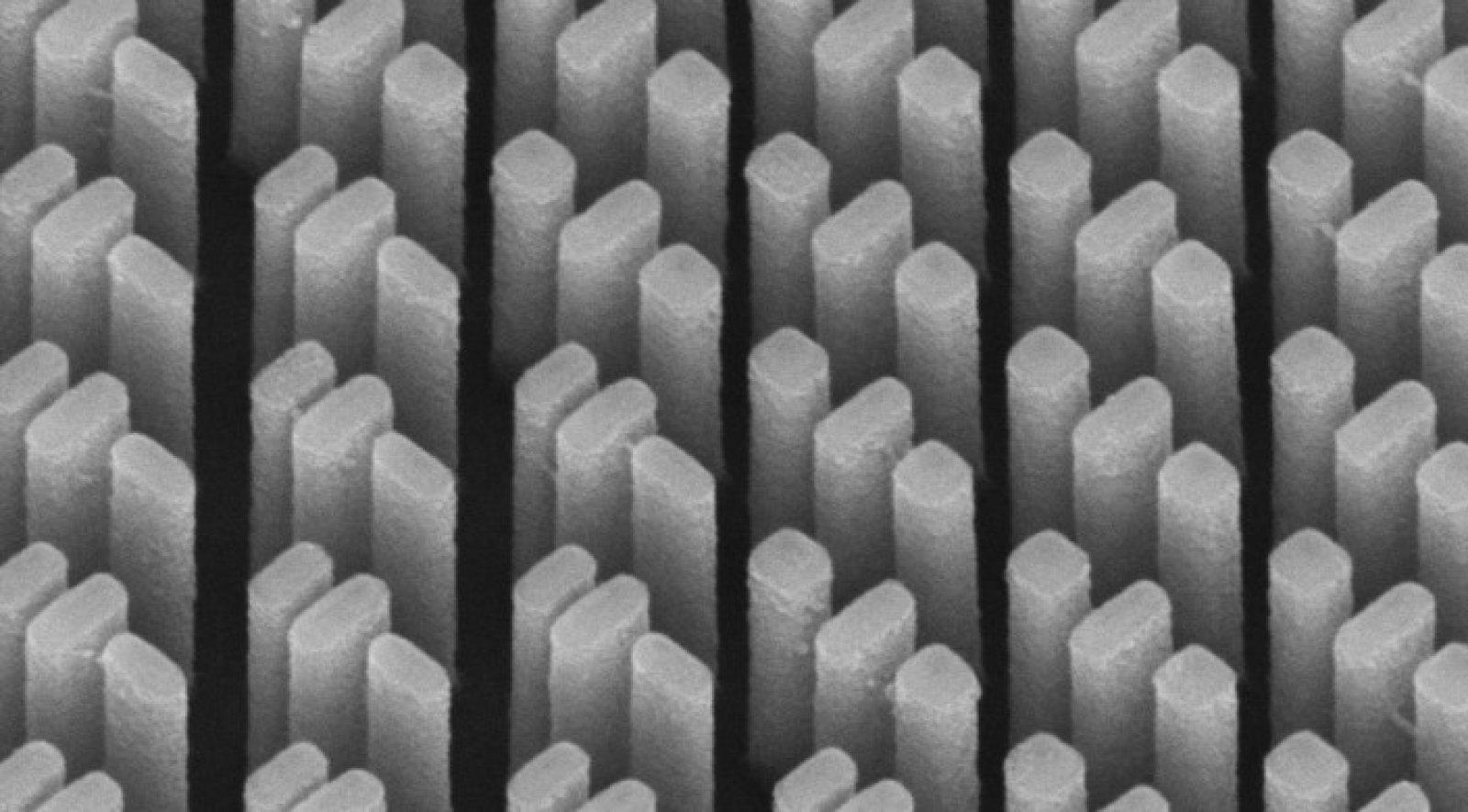 Ученые нашли эффективный способ решения проблемы фиолетового гало на фото