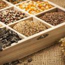 Наш интернет магазин семян поможет вам принять верное решение в пользу определенного посевного материала