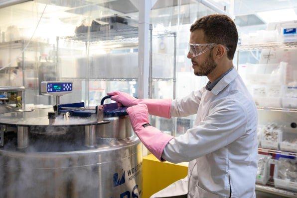 Калифорнийская компания создает дешёвую искусственную мраморную говядину элитных сортов