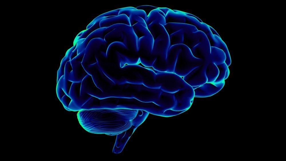 Нейробиологи обучили нейросеть переводить сигналы мозга в членораздельную речь