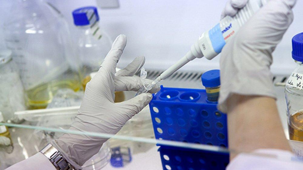 Открыт новый механизм активации иммунной системы для борьбы с раком