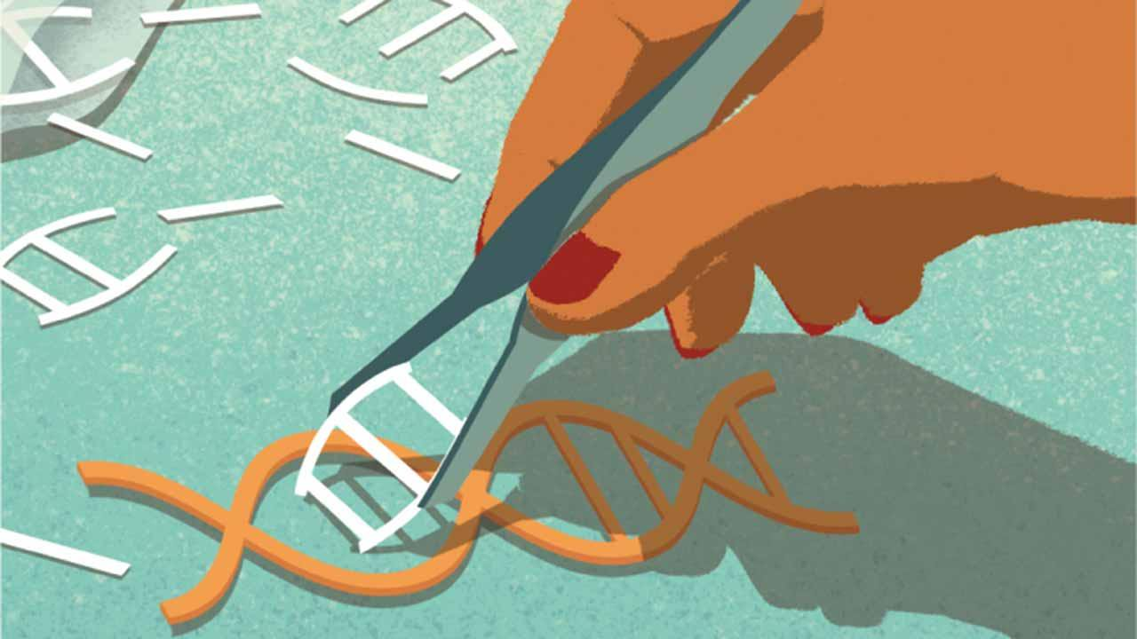 Инструмент редактирования генов CRISPR поможет найти новые антибиотики
