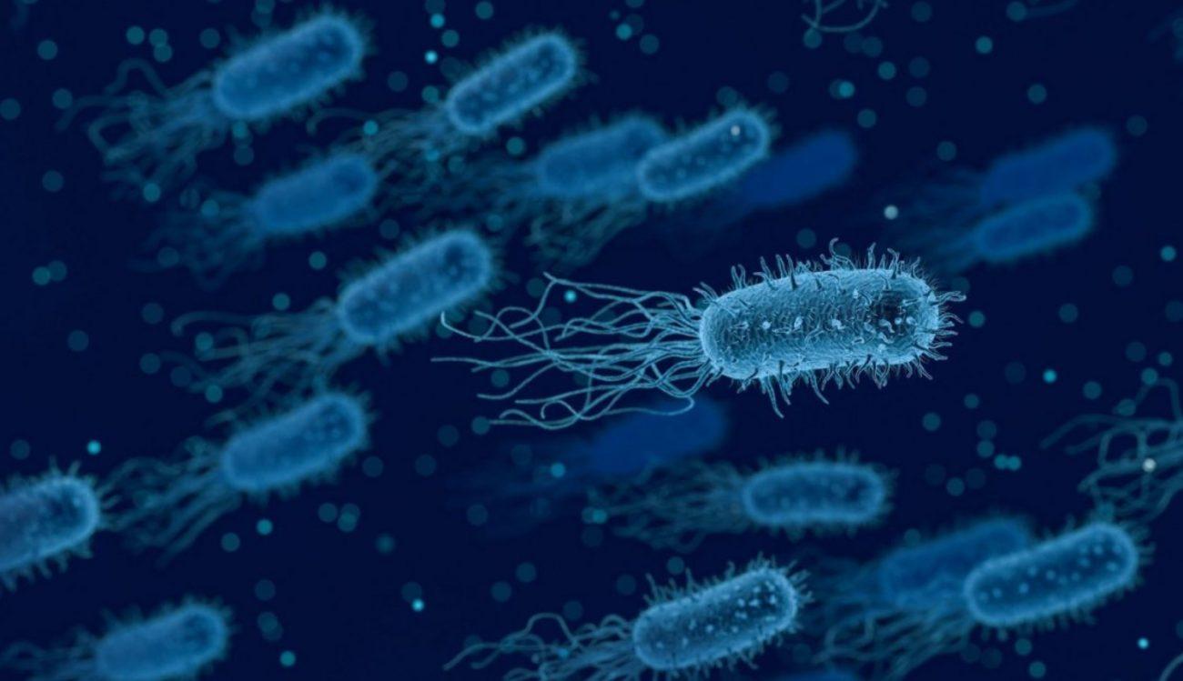 Учёные научились искать бактерии генерирующие электричество