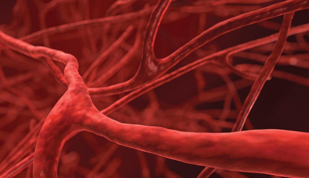 В человеческих костях найден ранее неизвестный тип кровеносных сосудов