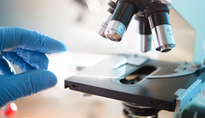 Ученые объявили о создании лекарства, полностью уничтожающего рак