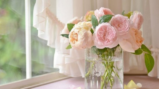 Цветы – лучший подарок