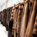 Стильные меховые изделия от отечественных производителей станут прекрасным вариантом для обеспечения индивидуальности и изысканности внешнего вида