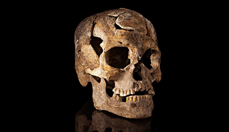 Ученые научились определять пол кремированных людей