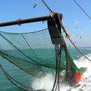 Рыболовные снасти для промышленной ловли