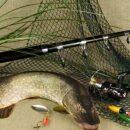 Купить сети для рыбака