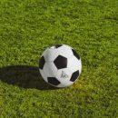 Первые шаги к вершине спортивного прогнозирования